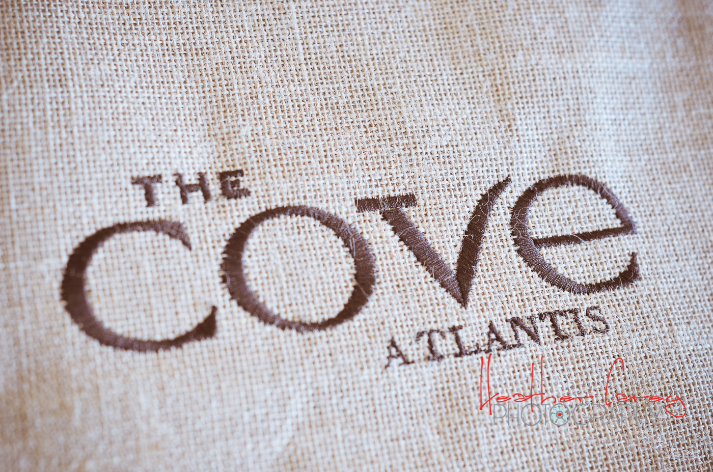 The Cove Atlantis Logo ah Well Maybe Next Time